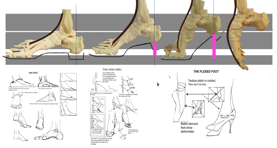 BeginnersFashionShoes-Feet-Anatomy   Justine Limpus Parish\'s Blog